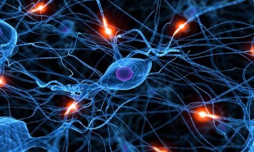 причина заболеваний нервной системы